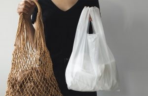 A woman holding a plastic bag and a mesh bag