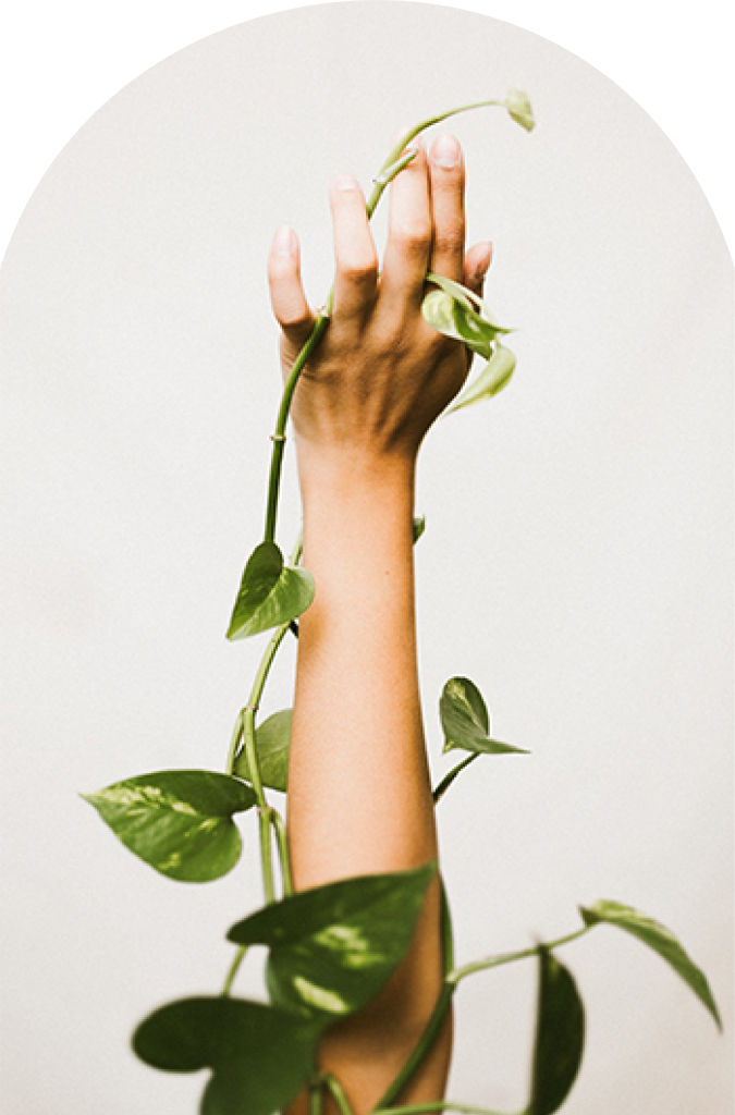 arm with plants wellness planner
